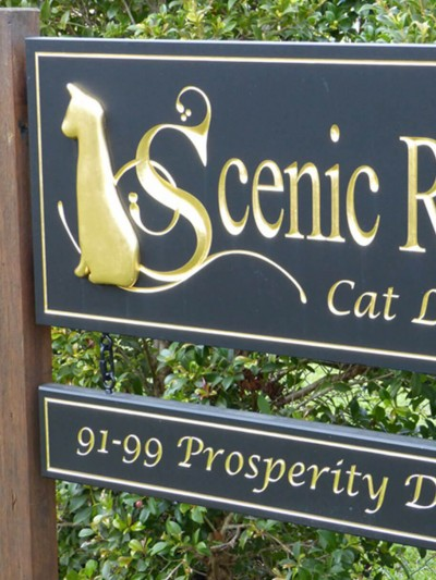 Scenic Rim Cat Lodge
